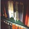 Damaged Books